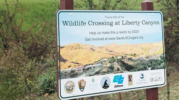 Wildlife Crossing at Liberty Canyon sign