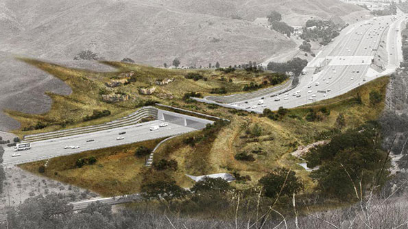 Rendering of wildlife crossing at Liberty Canyon